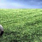 Calcio Serie A: tutto il calcio sul vostro Android