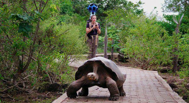 google-street-view-trekker-galapagos