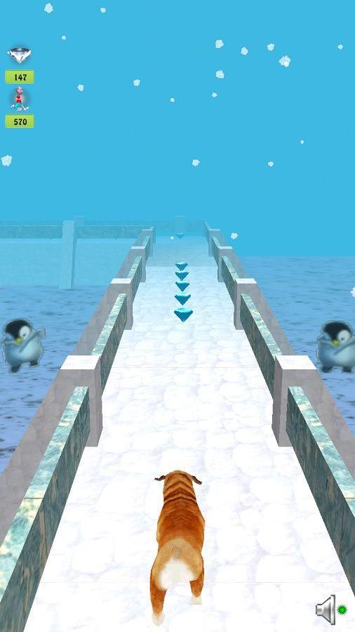 Temple-Dog-Run