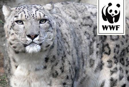 WWf calendario animali estinzione