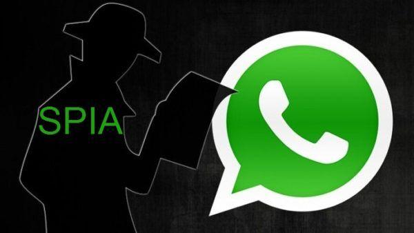 Spiare Whatsapp: ecco la procedura migliore
