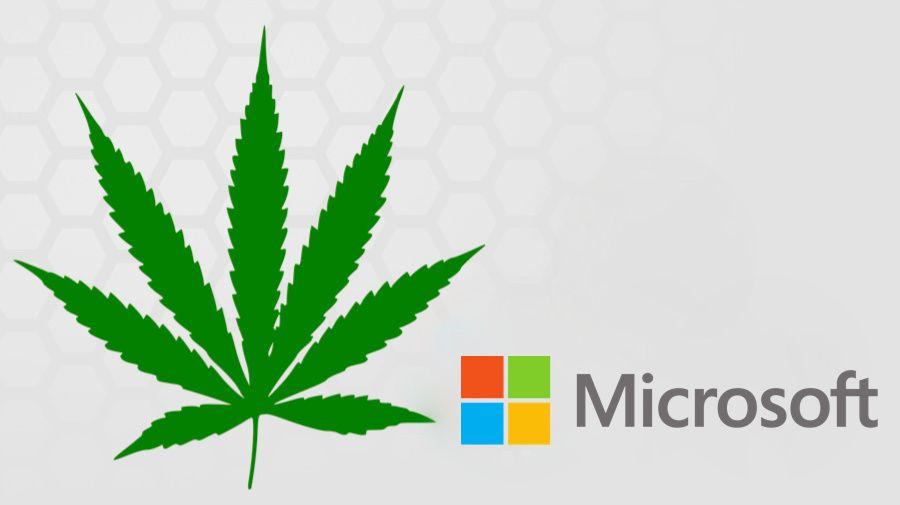 Microsoft: ecco il software per la vendita legale della marijuana