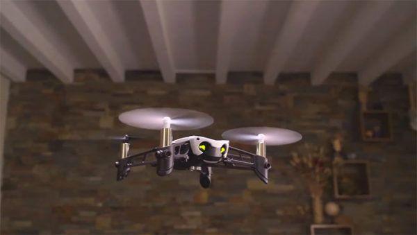 parrot droni