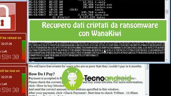 wannacry wanakiwi