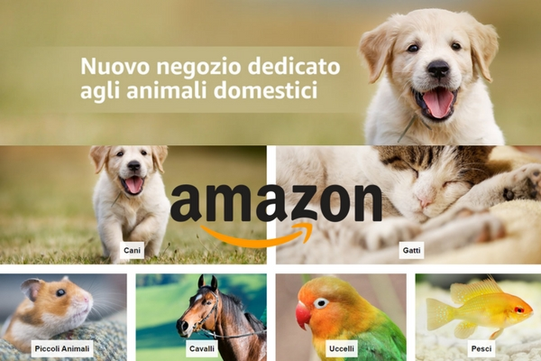 Amazon apre le porte agli animali: maxi assortimento per acquisti online