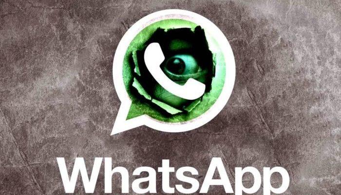 WhatsApp spia privacy