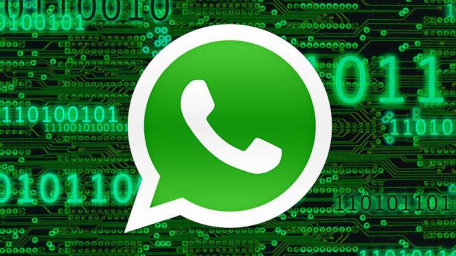 Novità WhatsApp, ecco come leggere i messaggi cancellati