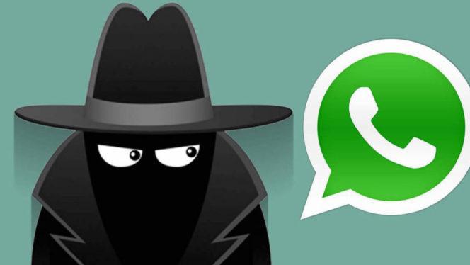 Whatsapp - come spiare le connessioni e gli accessi di una persona