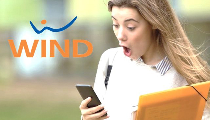WindAll Inclusive Flash 30 GB