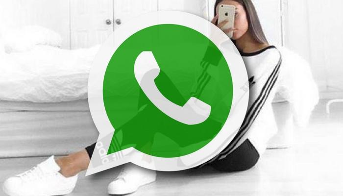 whatsapp adidas