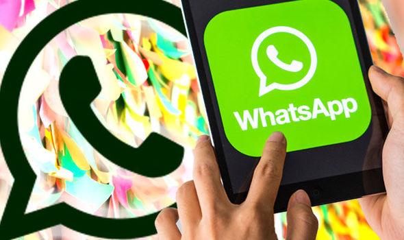 WhatsApp: 5 aggiornamenti che ogni utente deve conoscere