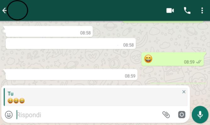 Quote messaggio Whatsapp