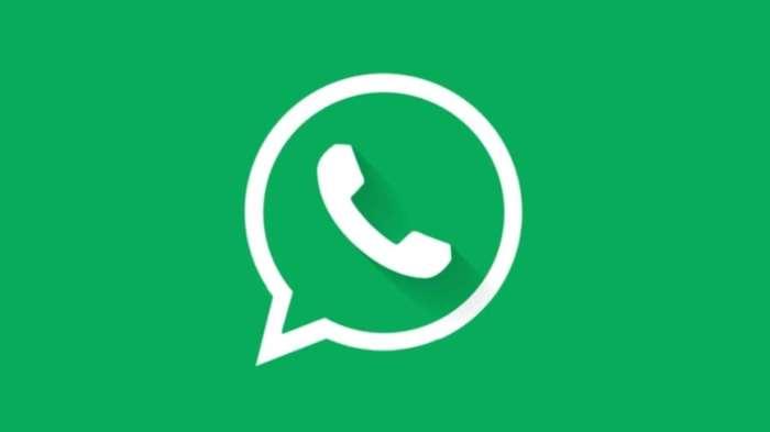 WhatsApp prepara il nuovo aggiornamento, una novità incredibile è in arrivo