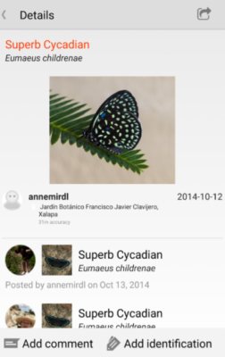iNaturalist Android
