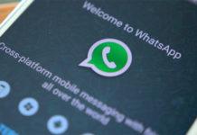 WhatsApp: i gruppi familiari sono i principali diffusori di fake news