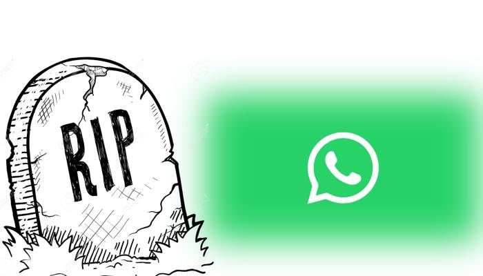 WhatsApp si aggiorna, arriva la funzione Pagamenti!