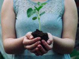Il 5 giugno è la Giornata Mondiale dell'Ambiente