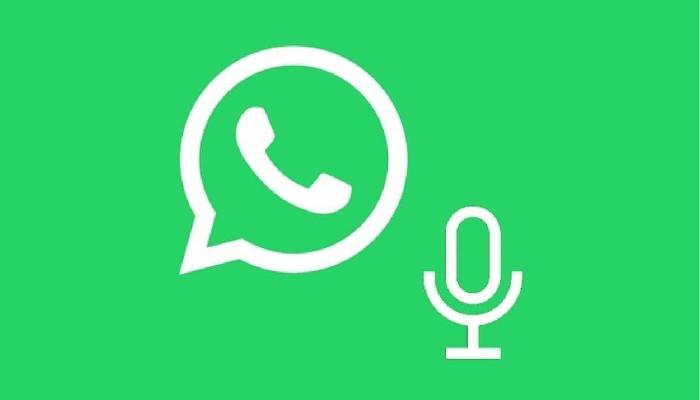 Whatsapp note vocali offline spunte blu