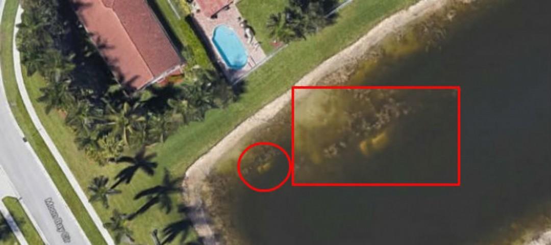 Google Maps ritrova un cadavere in uno stagno dopo vent'anni