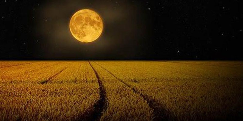 luna piena del raccolto