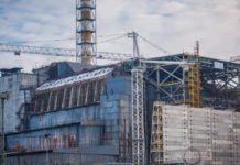 chernobyl-fungo-radiazioni