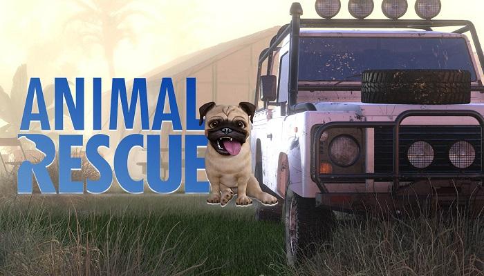 Animal Rescue, PC, Xbox One, Xbox Series X, Xbox Series S, PlayStation 4, PlayStation 5, Nintedo, Switch