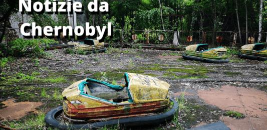 Chernobyl: il fungo che ha protetto l'umanità dalle polveri tossiche