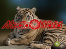 MediaWorld: nuovo volanti con prezzi shock, smartphone e PC low cost