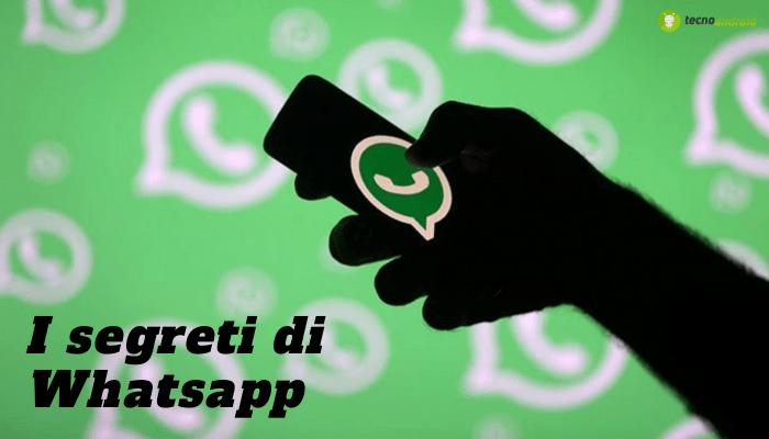 WhatsApp: tutte le NEWS sull'applicazione più usata al mondo
