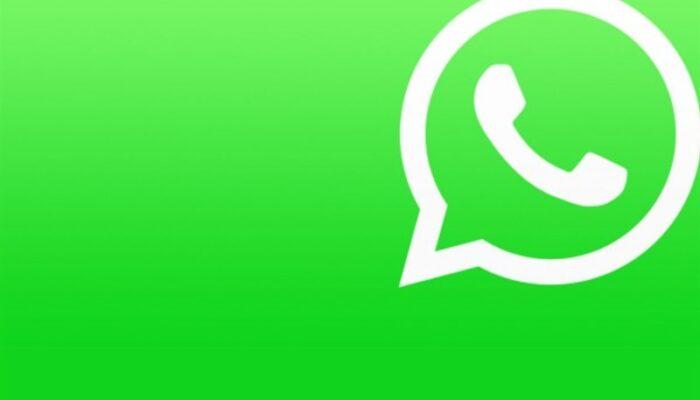 WhatsApp riporta un nuovo aggiornamento: per gli utenti grande novità