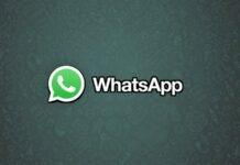 WhatsApp: ogni utente può fare la spia, ecco il trucco per farlo
