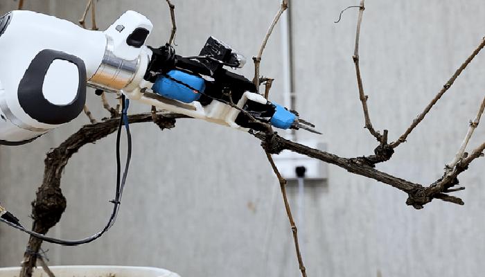 robot agricoltori