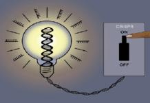 CRISPRoff
